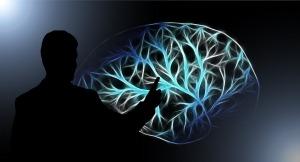 brain-3141247_960_720